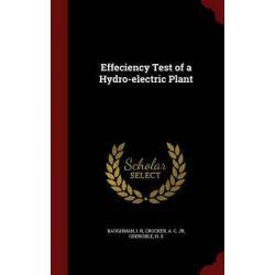 Effeciency Test of a Hydro-Electric Plant by I N Baughman, 9781298826404.