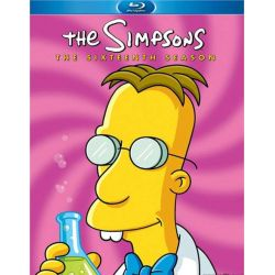 Simpsons, The: The Complete Sixteenth Season (Blu-ray  2004)