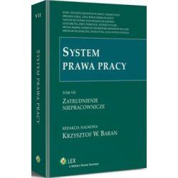 System prawa pracy. TOM VII. Zatrudnienie niepraco