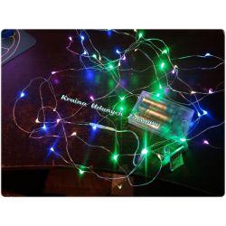 LAMPKI CHOINKOWE LED NA BATERIE NA DRUCIE Bulwy, cebulki, kłącza
