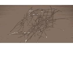 opornik kolor/paski wirnika agregat KD102 [Kraft&dele] Piły i wyrzynarki