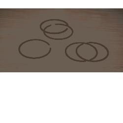 pierścień tłoka piły spalinowej [Eurotec] Piły