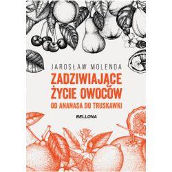 Zadziwiające życie owoców. Od ananasa do truskawki - Molenda Jarosław