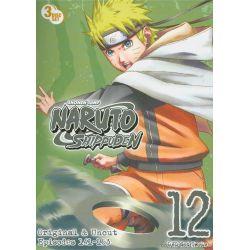 Naruto Shippuden: Volume 12 (DVD)