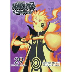 Naruto Shippuden: Volume 29 (DVD)