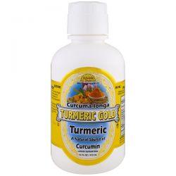 Dynamic Health  Laboratories, Turmeric Gold, 16 fl oz (473 ml)