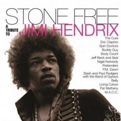 Stone Free: A Tribute To Jimi Hendrix - Various Artists Muzyka i Instrumenty