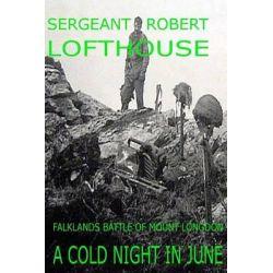A Cold Night in June, Falklands Battle of Mount Longdon by Sergeant Robert Lofthouse, 9781484892626.