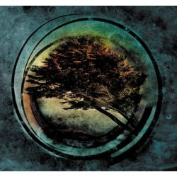 Aura - Tides From Nebula Biografie, wspomnienia