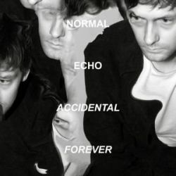 Accidental Forever - Normal Echo