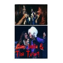 Janis Joplin & Tina Turner!, The Wild Child & the Private Dancer! by S King | 9781983606038 | Booktopia