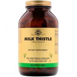 Solgar, Milk Thistle, 250 Vegetable Capsules Zdrowie i Uroda