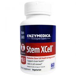 Enzymedica, Stem XCell, 60 Capsules Biografie, wspomnienia