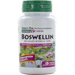 Nature's Plus, Herbal Actives, Boswellin, 300 mg, 60 Veggie Caps