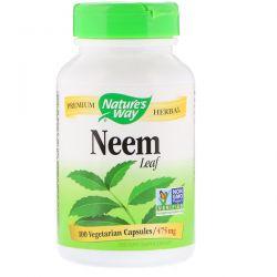 Nature's Way, Neem Leaf, 475 mg, 100 Vegetarian Capsules Biografie, wspomnienia