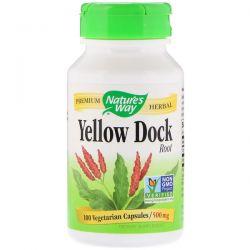 Nature's Way, Yellow Dock Root, 500 mg, 100 Vegetarian Capsules Biografie, wspomnienia