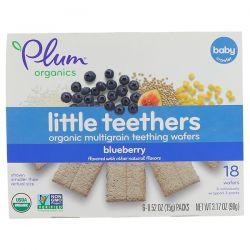 Plum Organics, Little Teethers, Organic Multigrain Teething Wafers, Blueberry, 6 Packs, 0.52 oz (15 g) Each Biografie, wspomnienia
