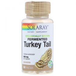 Solaray, Organically Grown Fermented Turkey Tail, 60 VegCaps Pozostałe