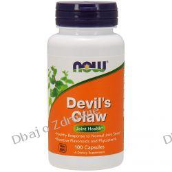 DEVIL'S CLAW (DIABELSKI PAZUR), NOW FOODS, 100 kaps. Odporność