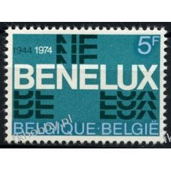 Holandia 1974 Mi 1035 ** Europa Cept Benelux  Druk wklęsły