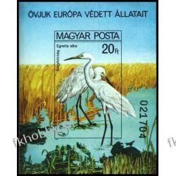 Węgry 1980 BL 146 B ** Europa Ptaki Czapla Flora