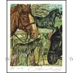 Kirnitskiy Sergey 2002 Exlibris C4 Horse Pferd Cheval Cavallo Koń Animals 46 Antyki i Sztuka