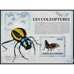 Komory 2009 Mi BL 471 ** Zwierzęta Mrówki Fauna