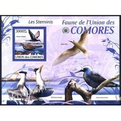 Komory 2009 Mi BL 523 ** Ptaki Ptak Kolekcje