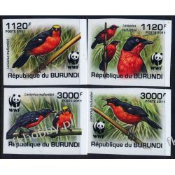 Burundi 2011 Mi 2126-29 B ** WWF Ptaki Ptak Kolekcje