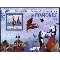 Komory 2009 Mi BL 515 ** Ptaki Ptak Ptaki