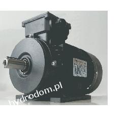 Silnik 3,0kW 400V OMT4 100L2-4 B3 Pompy i hydrofory
