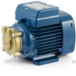 Pompa przemysłowa PVm 55 230V 50-60Hz PEDROLLO Pompy i hydrofory