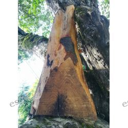 Mandala na drewnianym podkładzie