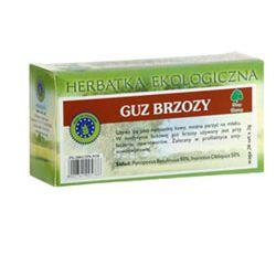 Guz brzozy (huba brzozowa) - dary natury Zdrowie i Uroda