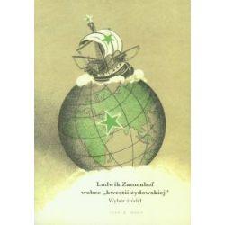 Ludwik Zamenhof wobec kwestii żydowskiej(Miękka ze skrzydełkami) Książki i Komiksy