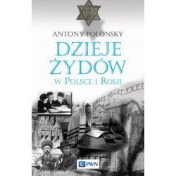 Dzieje Żydów w Polsce i Rosji(Twarda) Książki i Komiksy
