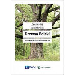Drzewa Polski - Paweł Zarzyński, Robert Tomasiak, Krzysztof Borkowski - Książka Pozostałe