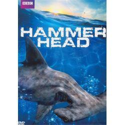 Hammerhead (DVD 2013) Pozostałe
