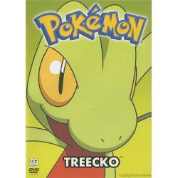 Pokemon All-Stars: Volume 12 (DVD) Pozostałe