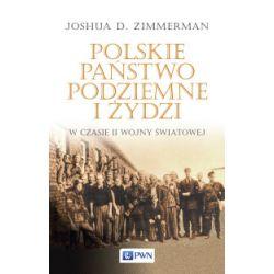 Polskie Państwo Podziemne i Żydzi w czasie II wojny światowej - Joshua D. Zimmerman - Książka Pozostałe