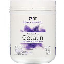 Zint, Premium Beef Gelatin, Thickening Protein Powder, 32 oz (907 g) Zdrowie i Uroda
