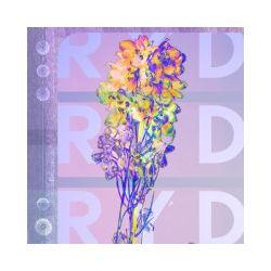 RYD, CD - RYD - Płyta CD