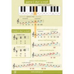 Tablica 3. Gama C-dur i a-moll - praca zbiorowa - Książka