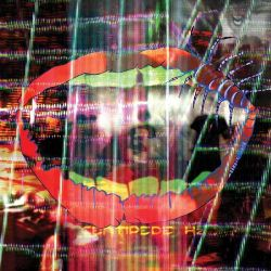 Centipede HZ (2LP+MP3) Muzyka i Instrumenty