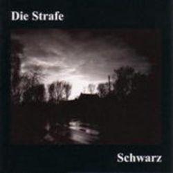 Schwarz Muzyka i Instrumenty