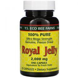 Y.S. Eco Bee Farms, Royal Jelly, 2,000 mg , 35 Capsules Animowane