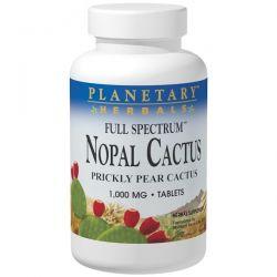 Planetary Herbals, Nopal Cactus, Full Spectrum, Prickly Pear Cactus, 1,000 mg, 120 Tablets Animowane