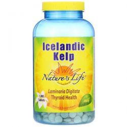 Nature's Life, Icelandic Kelp, 1,000 Tablets Pozostałe