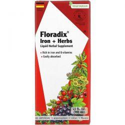 Gaia Herbs, Floradix, Iron + Herbs, 23 fl oz (700 ml) Pozostałe