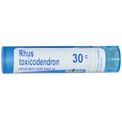 Boiron, Single Remedies, Rhus Toxicodendron, 30C, Approx 80 Pellets Zdrowie i Uroda